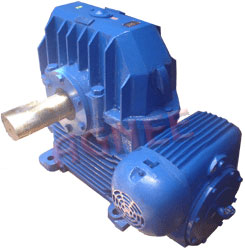 Manufacturer and Exporter of Double Reduction Worm Gear Boxes