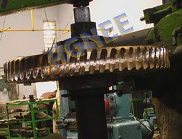 Worm gear teeth generation on gear hobbing machine