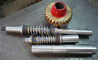 Worm Shafts and Worm Gear sets for Worm Gear Box